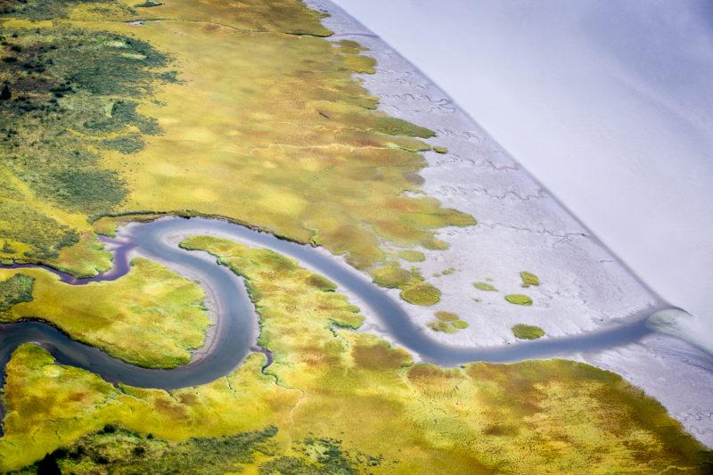 Unknown Creek feeding into Taku Inlet near Juneau, Alaska
