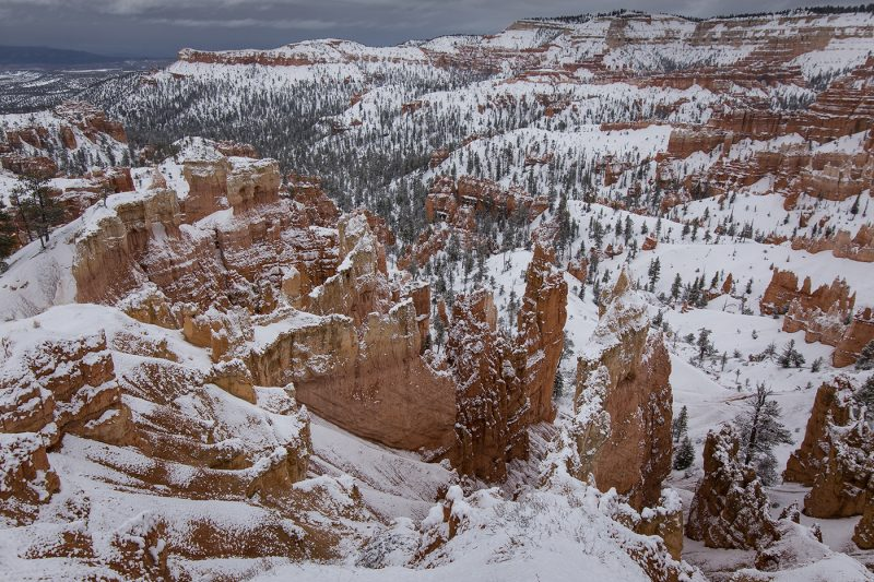 Hoodoos After a Winter Storm