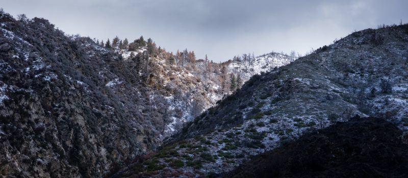 Snow Dusting, San Bernardino Mountains