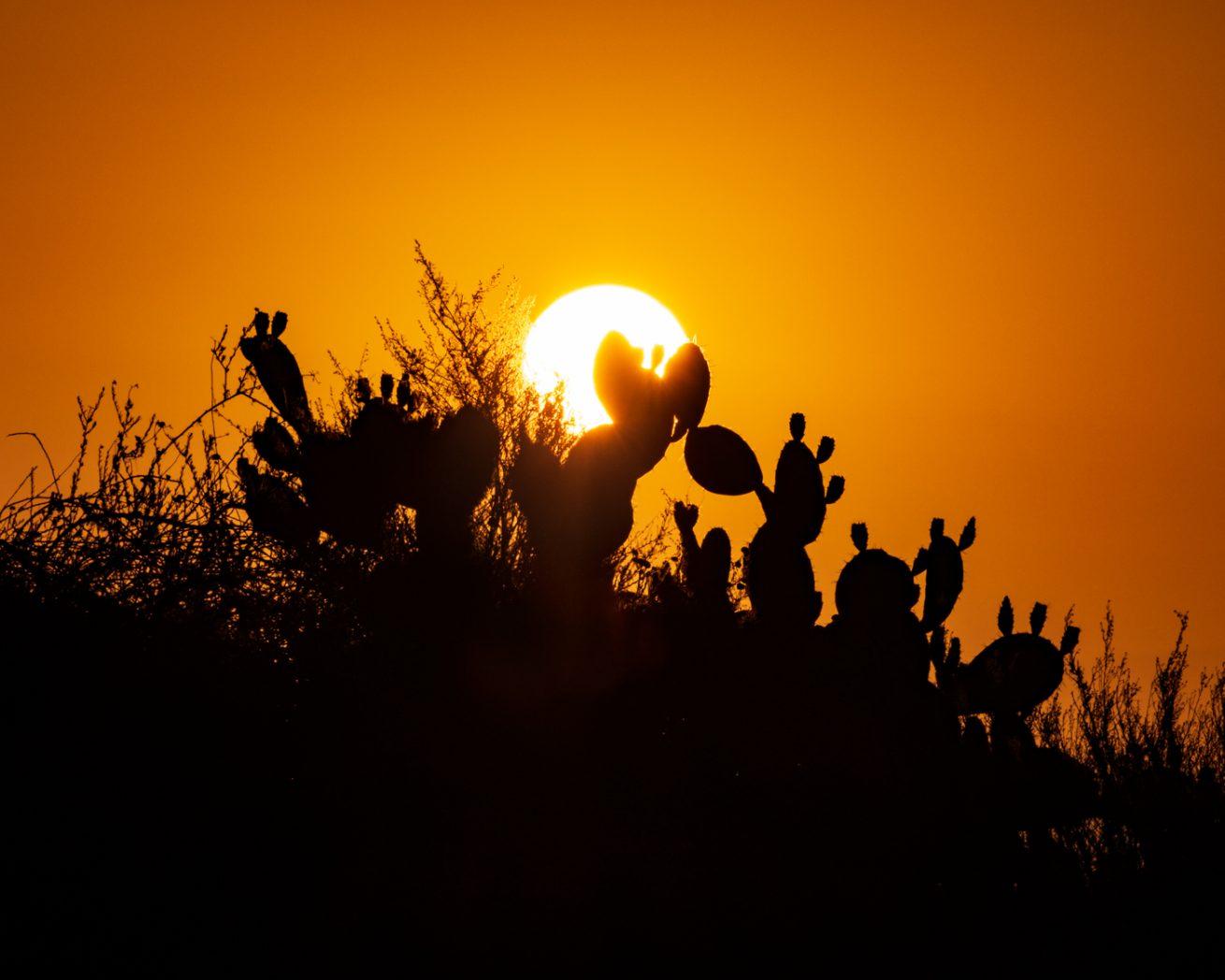 Three Sunrises